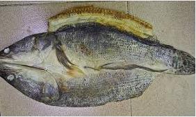 Ikan Asin Toman