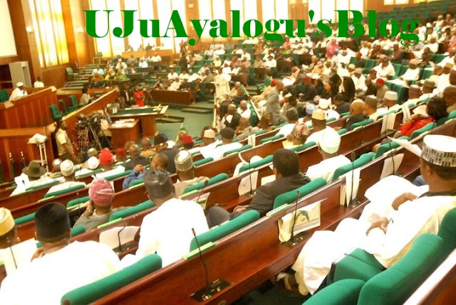 Reps Vote NO To Remove NYSC From Constitution
