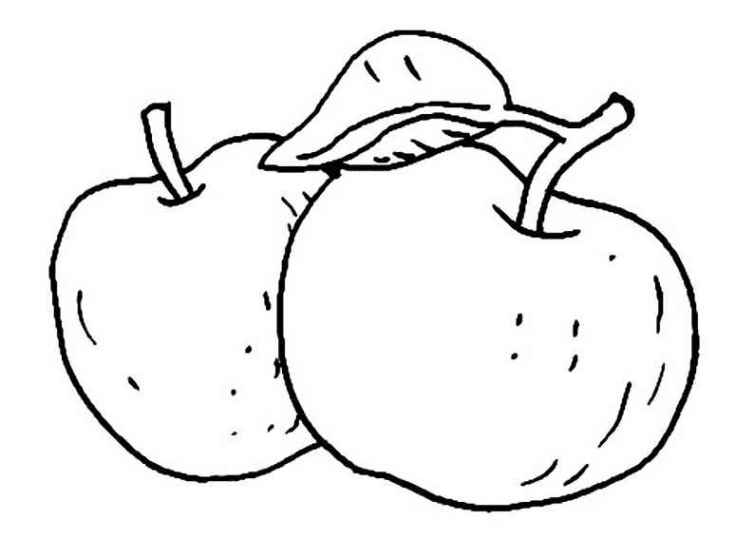 196pfel ausmalbild gratis malvorlagen 196pfel zum ausmalen