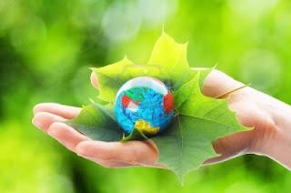 poemas al medio ambiente