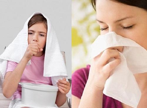 Cách thực hiện bài thuốc từ mật heo và hoắc hương trị viêm xoang