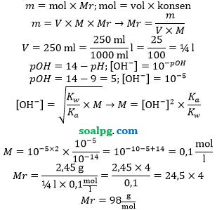massa relatif garam hidrolisis