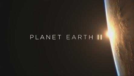 Planet Earth : Sebuah Serial TV Terbaik Sepanjang Sejarah