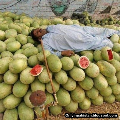 Funny Pakistani fruit shopkeeper