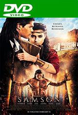 Sansón (2018) DVDRip Latino AC3 5.1