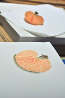 Wrinkled peach study in progress