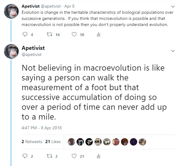 What is the mechanism that prevents macroevolution?