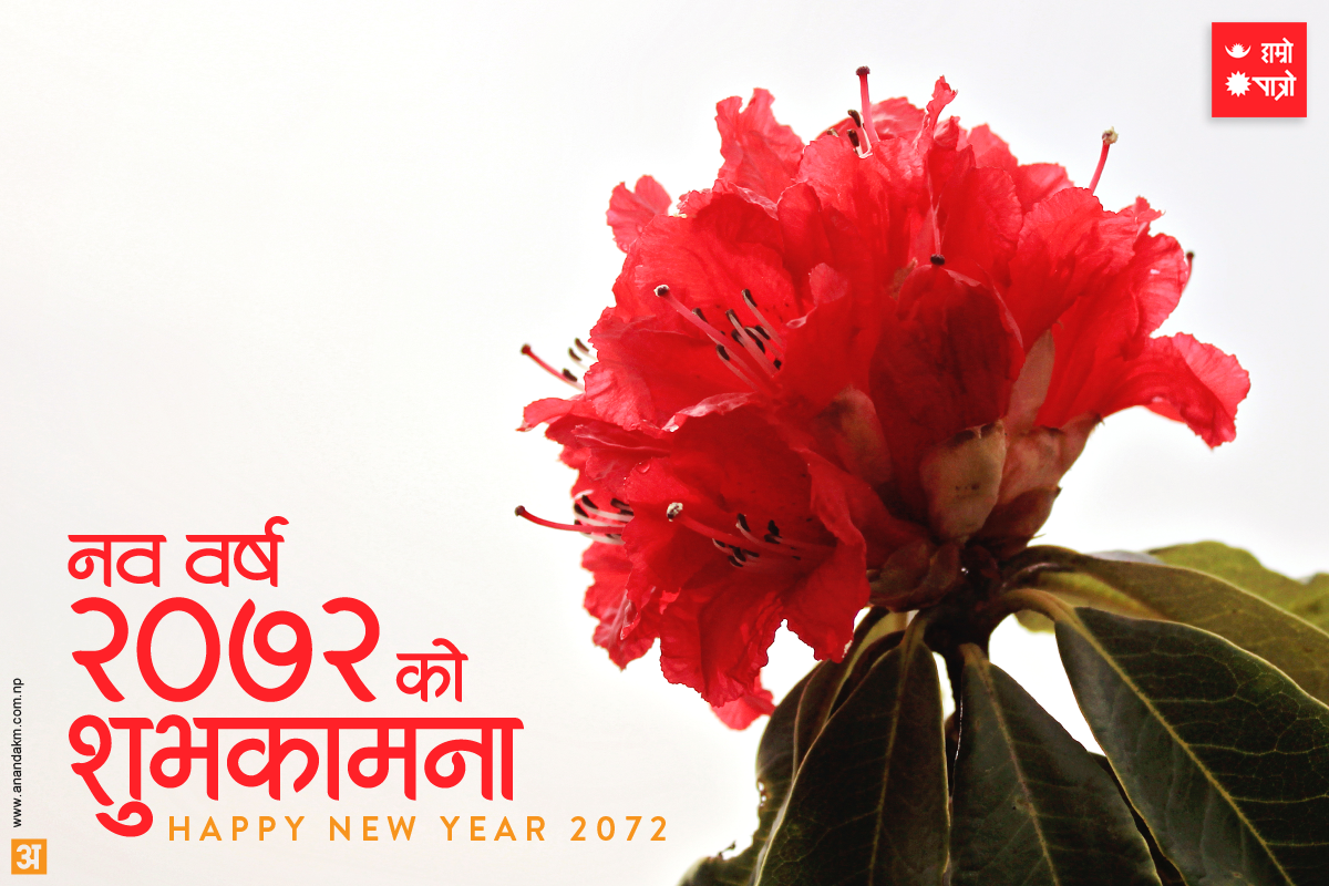 New Year Quotes In Nepali: New Nepali Fonts: Happy Nepali New Year 2072 Greetings Ecards