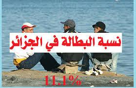 11 بالمائة نسبة البطالة في الجزائر!