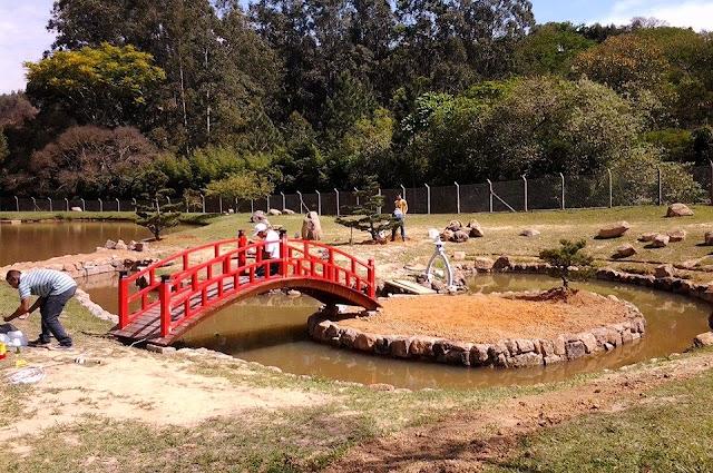 pinheiro negro; ponte para jardim japones; jardim com lago
