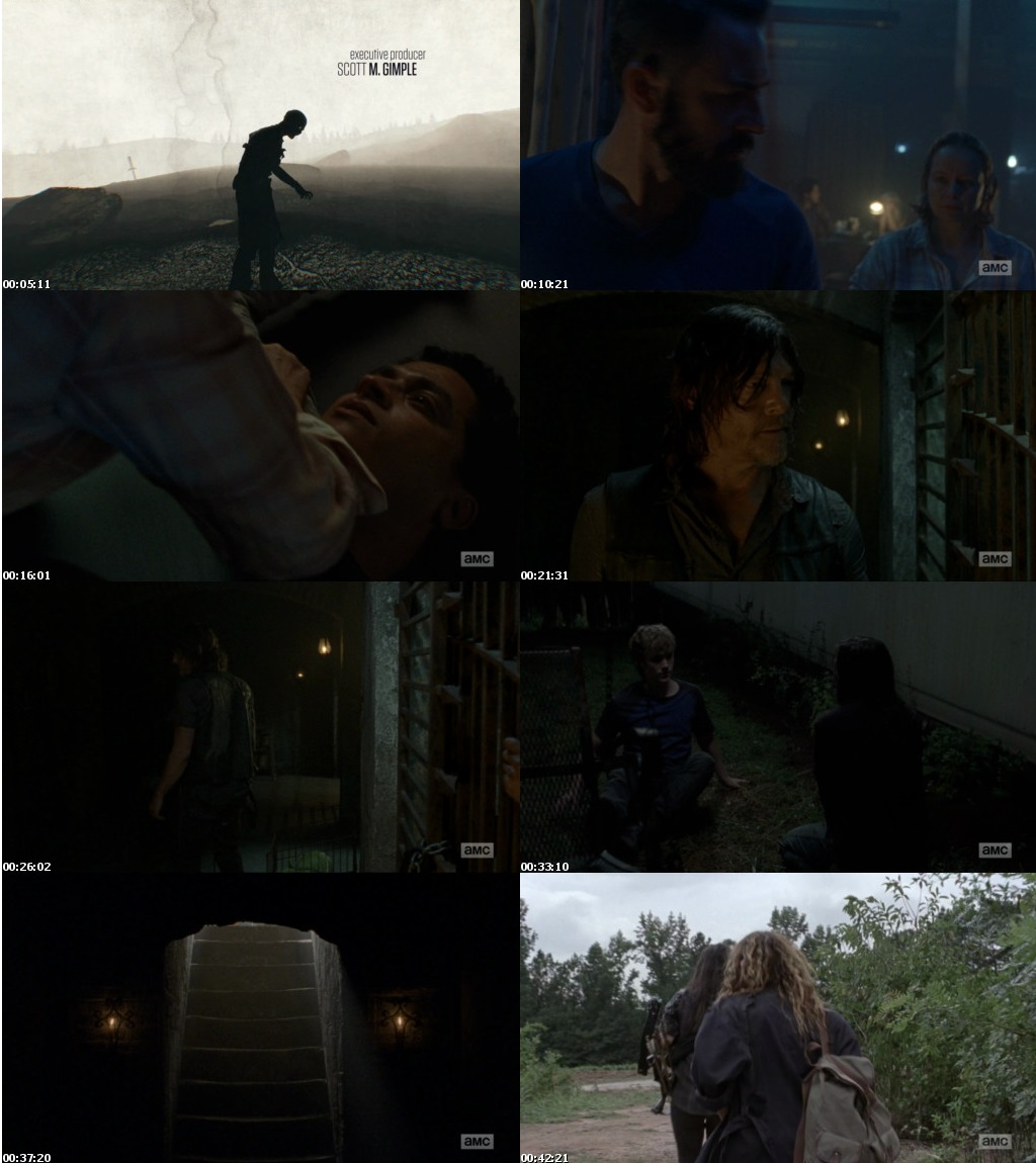 Watch Online Free The Walking Dead S09E10 Full Episode The Walking Dead (S09E10) Season 9 Episode 10 Full English Download 720p 480p