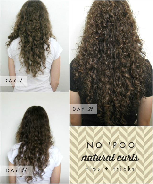 Beginner Beans Curly Haired Girl S Testimonial To No Poo