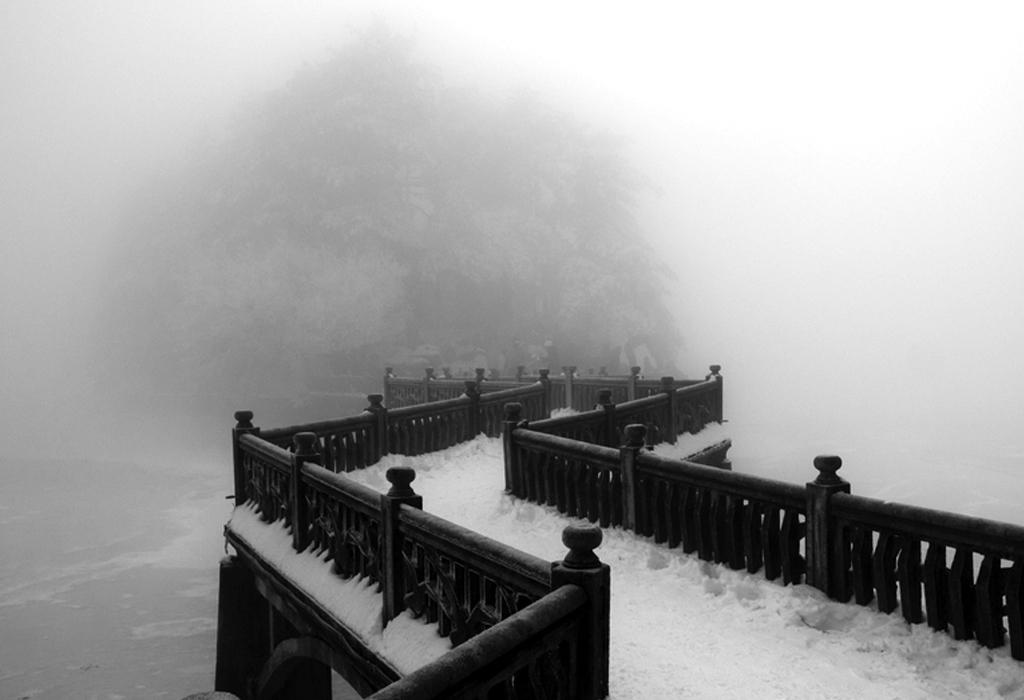 Bridges Black And White Bridges