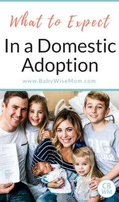The Steps to Expect in the Process of Domestic Adoption. How to know if adoption is right for you and everything to expect.