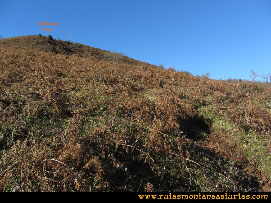 Area Buyera, picos Grandamiana y Plantón: Camino al Canto La Cruz