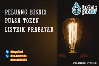 peluang bisnis pulsa token listrik prabayar