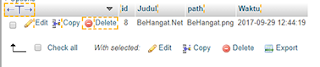 Input Data Berhasil di Simpan di Lihat dari PHPMyAdmin - BeHangat