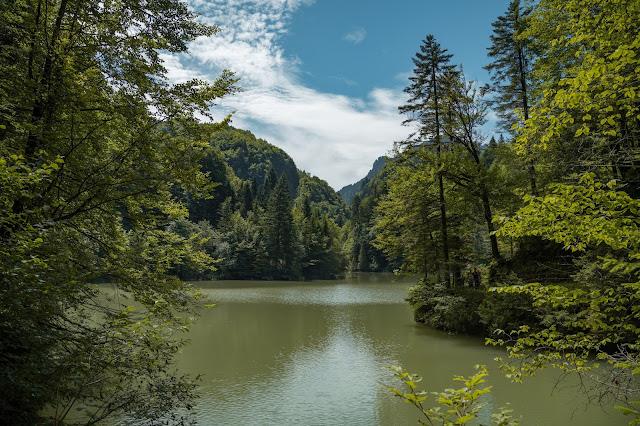 Rappenlochschlucht Staufensee Dornbirn Wandern-Vorarlberg 11