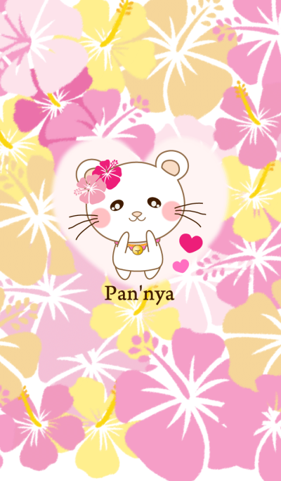 Panda cat, Pan'nya and hibiscus theme