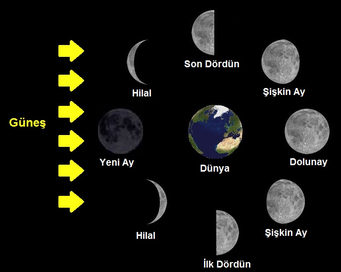 5 Sinif Ay In Hareketleri Ve Evreleri Konu Anlatimi Fenbilim Net