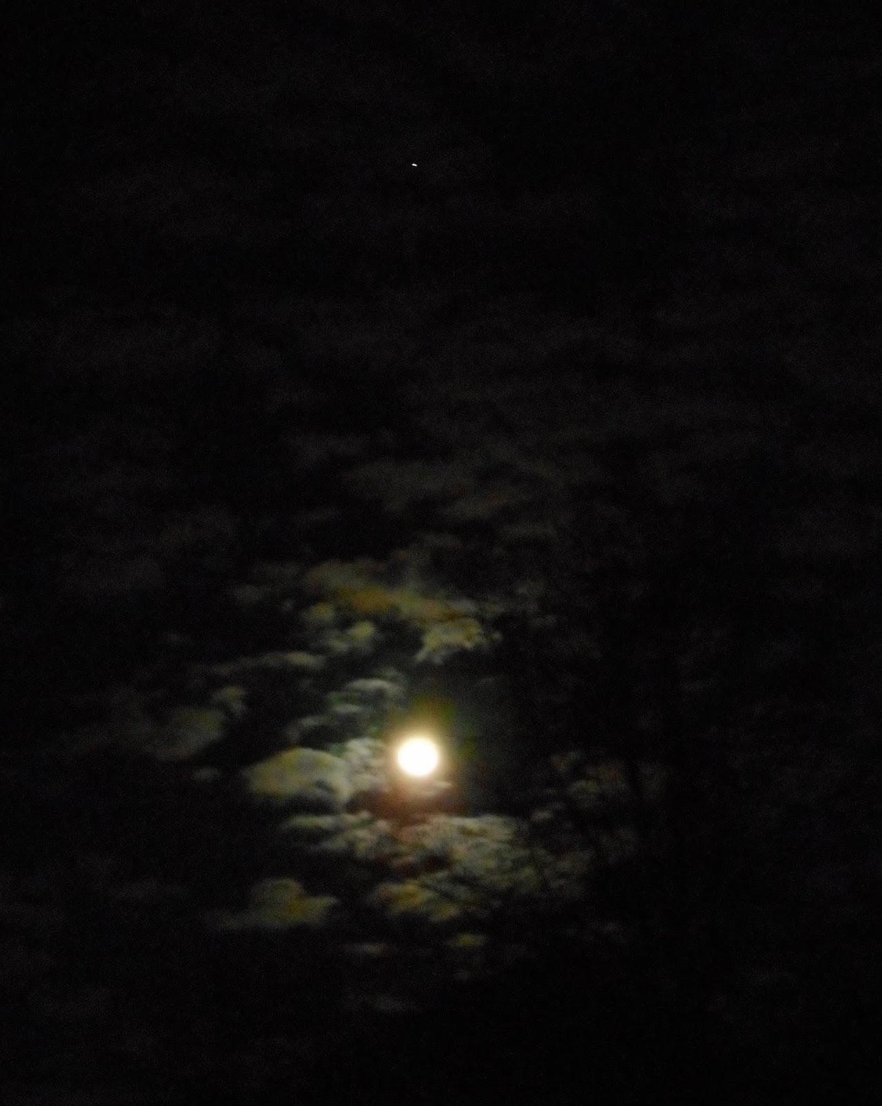 the moon and jupiter tonight - photo #22