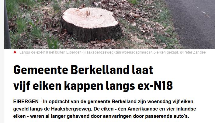 https://www.tubantia.nl/achterhoek/gemeente-berkelland-laat-br-vijf-eiken-kappen-langs-ex-n18~a6242409/?sfns=xmwa