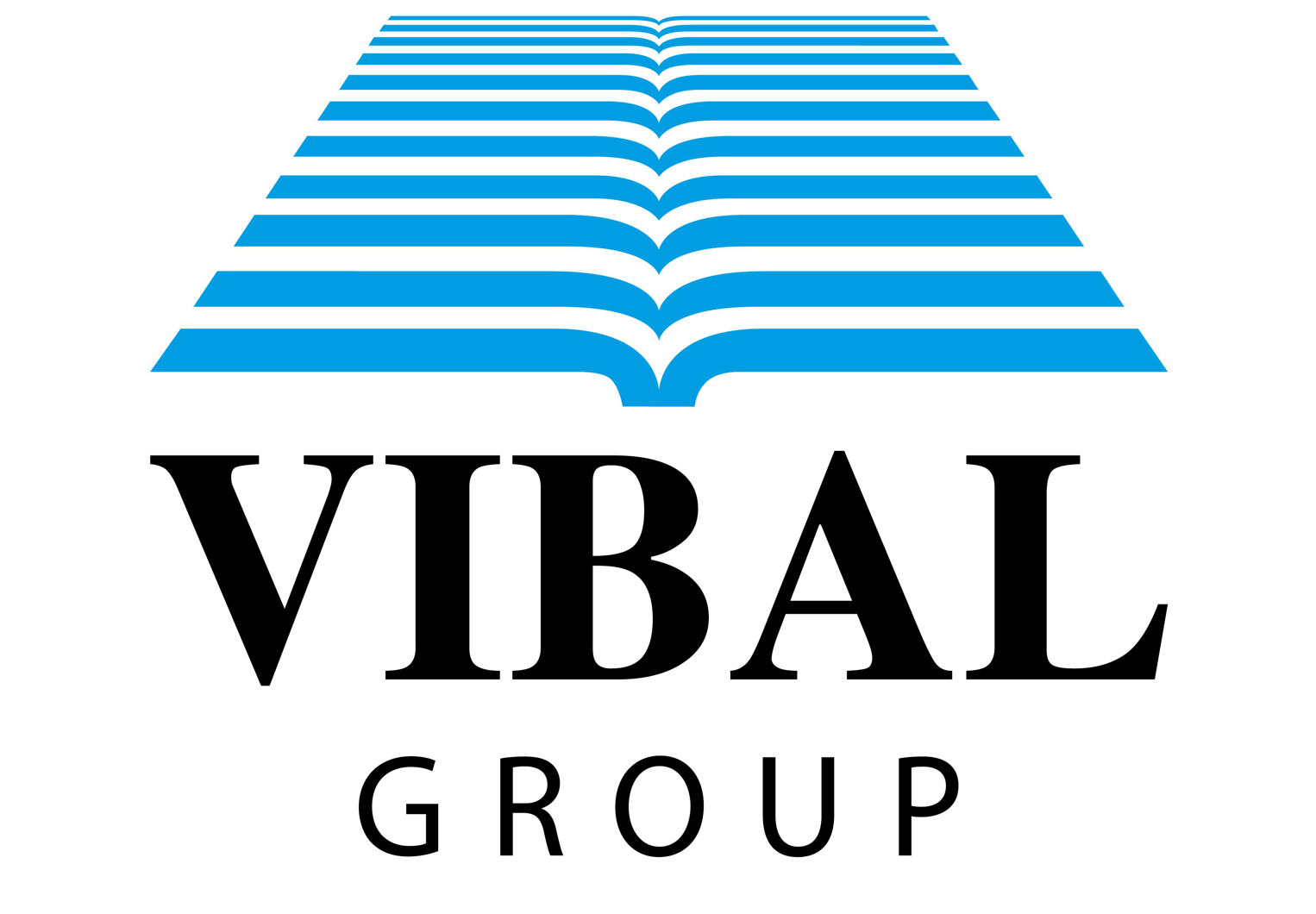 VIBAL GROUP