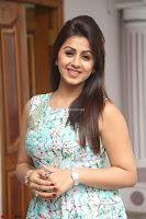 Nikki Galrani at Prema leela pelli gola trailer Launch ~  Exclusive 028.JPG