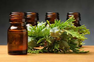 Aceite de Cipres Para Hemorroides