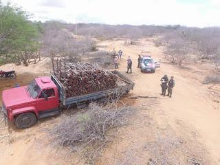 Polícia usa drone e aprende carga de madeira nativa na zona rural de São Vicente do Seridó