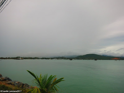 Koh Samui, Thailand daily weather update; 8th January, 2017