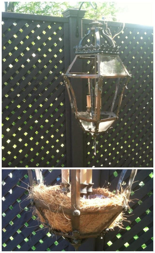 vintage lantern turn into a planter, garden art, debbie miller