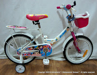 16 Inch Avand Aiko Kids Bike