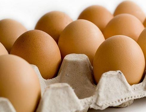 Cara Mengatasi Turunya Produksi Telur