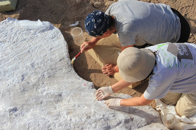 10,000-year-old painted lime floor discovered in Jordan