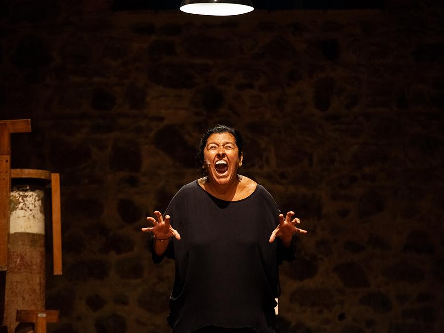Recital da Onça - Regina Casé - Festival de Teatro de Curitiba 2019 - foto reprodução internet