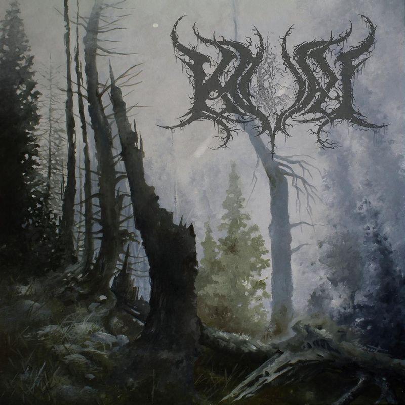 Finnish Black Metal Terrorism: Kval
