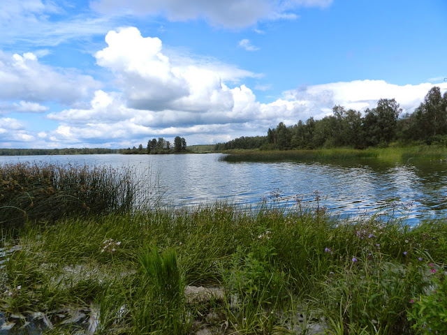 Заливчик на озере Киреты