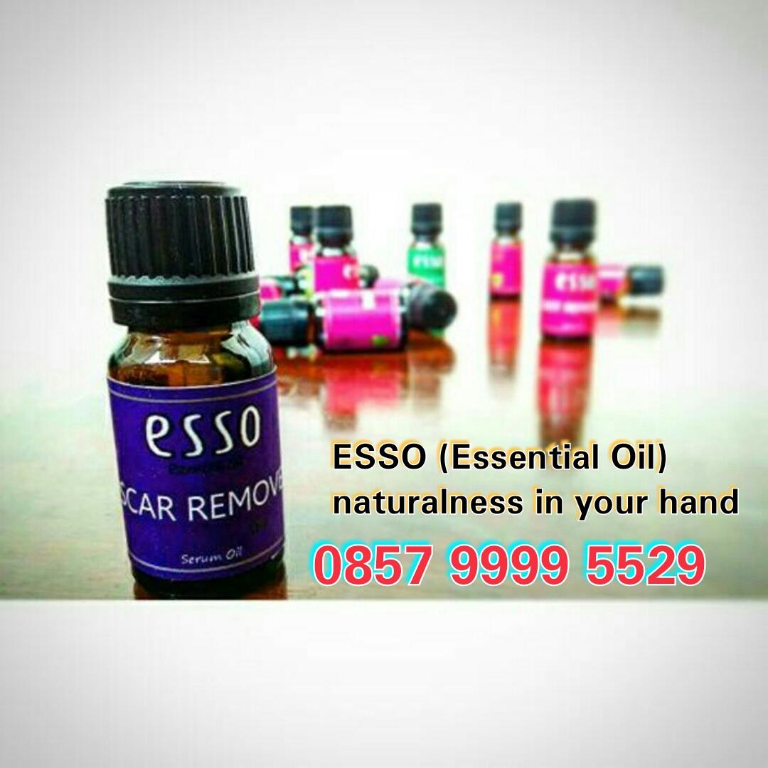Jual Minyak Atsiri Essential Oil Di Kota Jambi Aroma Terapi Bahan Beli Mint Tanaman Penghasil Terbanyak Harga