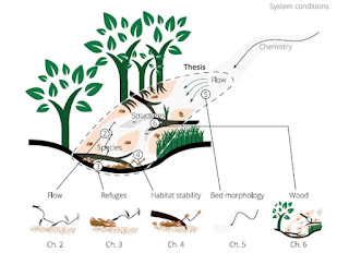 Figure 2. Coherence of the chapters in this thesis, including key ecological factors and processes in sand-bed lowland streams according to Verdonschot (1998). In: Spatiotemporal heterogeneity in lowland streams : a benthic macroinvertebrate perspective