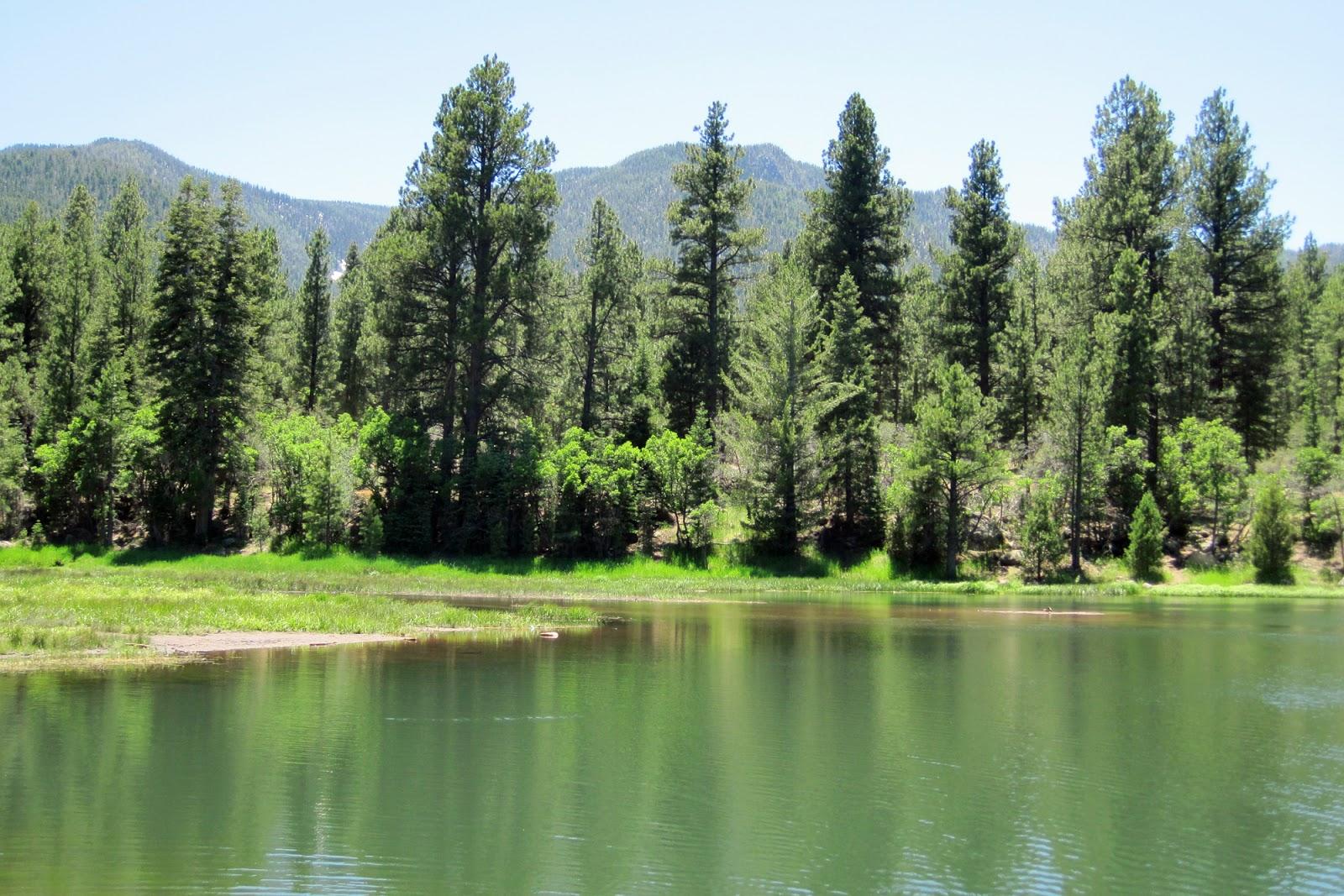 FisherDad: Pine Valley, Utah