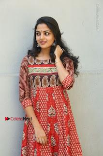 Telugu Actress Nikhila Vimal Latest Stills in Anarkali Dress  0077.JPG