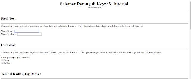 Kumpulan Input HTML - KeyzeX