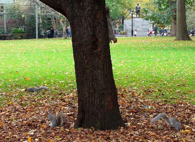 New York, Madison Square Park