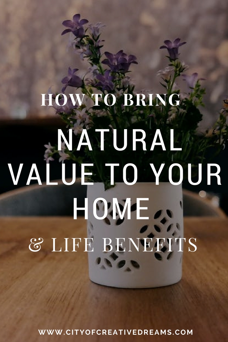 How to Bring Natural Value to Your Home & Life Benefits | City of Creative Dreams