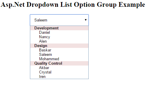 how to implement option group in asp net drop down list