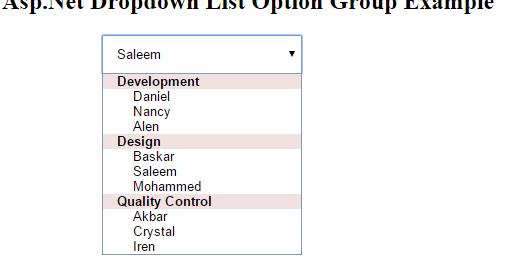 Asp Net Option Group 57
