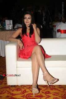 Actress Catherine Tresa Unveils Intex Air Conditioners  0161.jpg