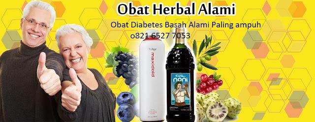 Ditributor Resmi/Kantor Obat Herbal Diabetes di Malang 0821 6527 7053/ 0811 202 7577