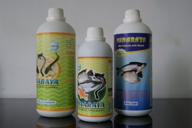 Vitamin Ikan Lele